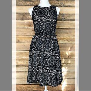 Tacera Dresses - Tacera black & white lace fit & flare belted dress